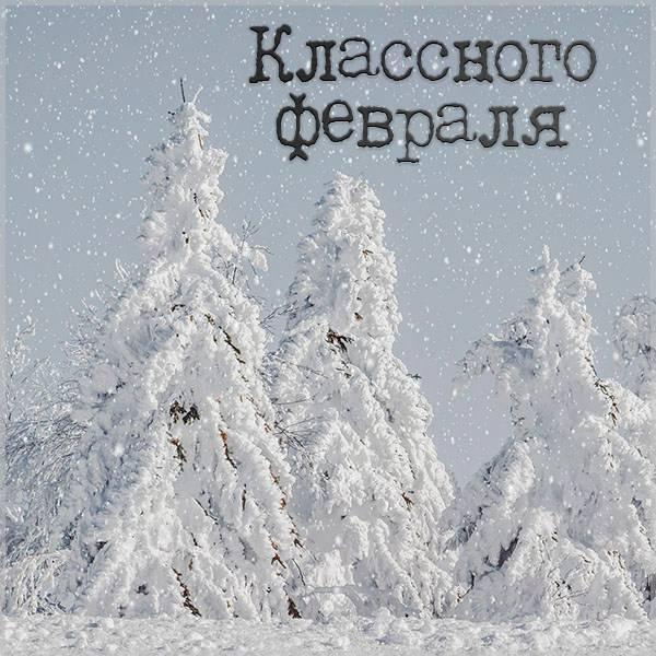 Картинка классного февраля - скачать бесплатно на otkrytkivsem.ru