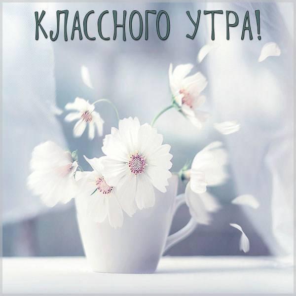 Картинка классного утра - скачать бесплатно на otkrytkivsem.ru