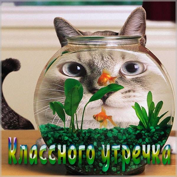Картинка классного утречка - скачать бесплатно на otkrytkivsem.ru