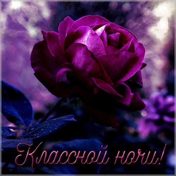 Картинка классной ночи - скачать бесплатно на otkrytkivsem.ru