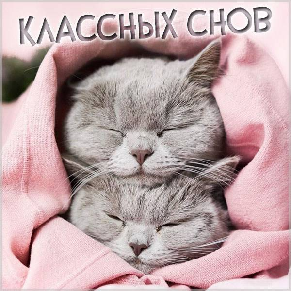 Картинка классных снов - скачать бесплатно на otkrytkivsem.ru