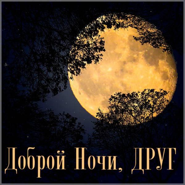 Картинка красивая другу доброй ночи - скачать бесплатно на otkrytkivsem.ru