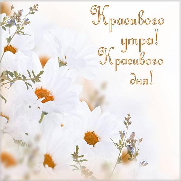 Картинка красивого утра и дня - скачать бесплатно на otkrytkivsem.ru