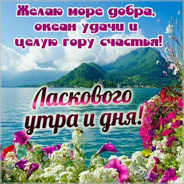 Картинка ласкового утра и дня пожелание - скачать бесплатно на otkrytkivsem.ru