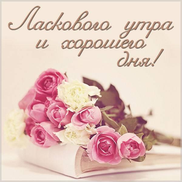 Картинка ласкового утра и хорошего дня - скачать бесплатно на otkrytkivsem.ru