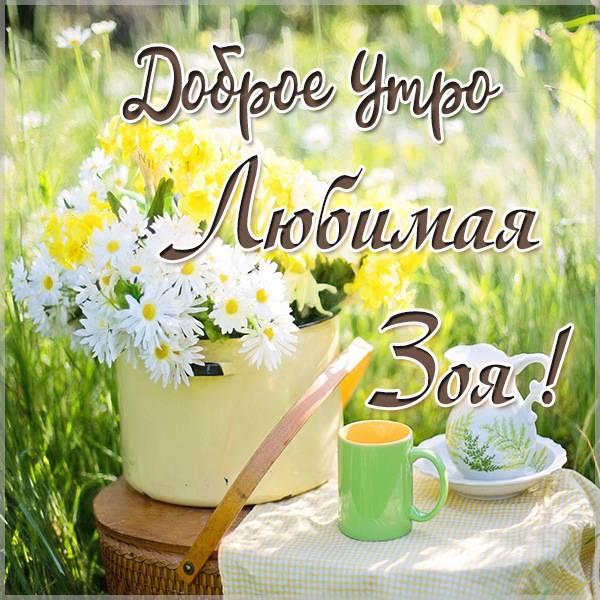 Картинка любимая Зоя доброе утро - скачать бесплатно на otkrytkivsem.ru