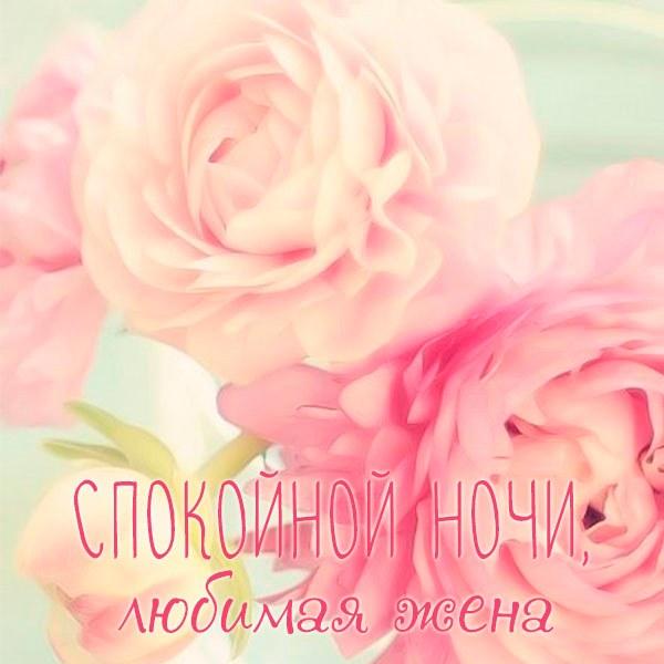Картинка любимой жене от мужа спокойной ночи - скачать бесплатно на otkrytkivsem.ru