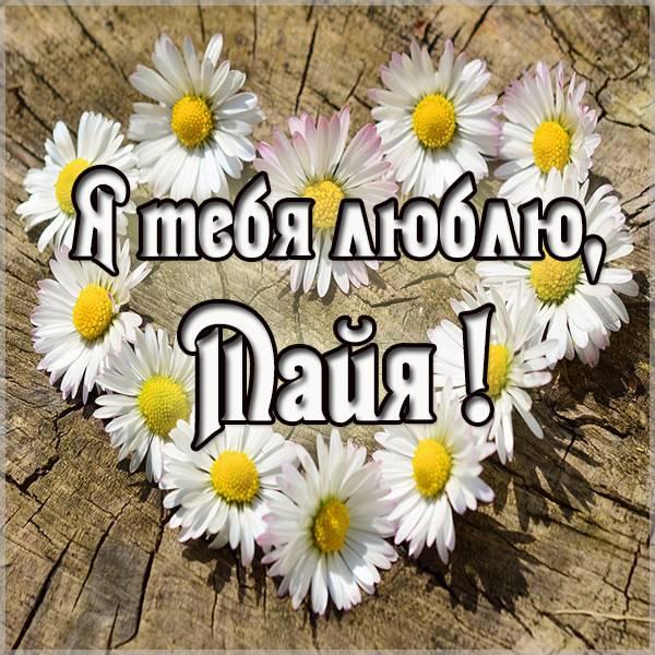 Картинка люблю тебя Майя - скачать бесплатно на otkrytkivsem.ru