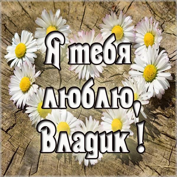Картинка люблю тебя Владик - скачать бесплатно на otkrytkivsem.ru