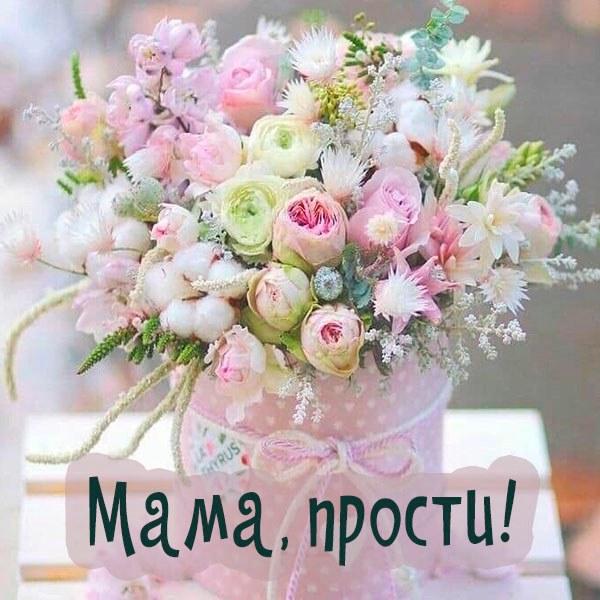 Картинка мама прости сына - скачать бесплатно на otkrytkivsem.ru