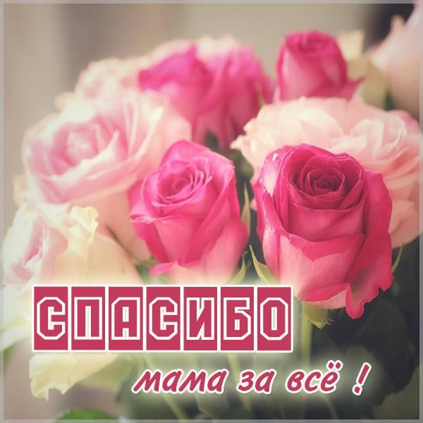 Картинка мама спасибо за все - скачать бесплатно на otkrytkivsem.ru