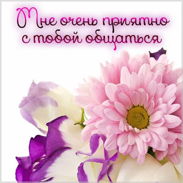 Картинка мне очень приятно с тобой общаться - скачать бесплатно на otkrytkivsem.ru