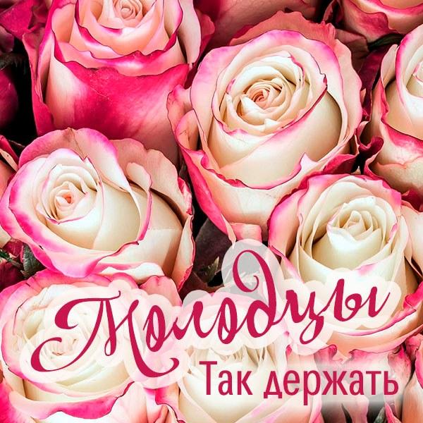 Картинка молодцы так держать - скачать бесплатно на otkrytkivsem.ru