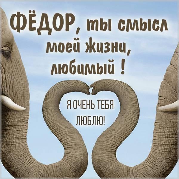 Картинка мой любимый Федор - скачать бесплатно на otkrytkivsem.ru