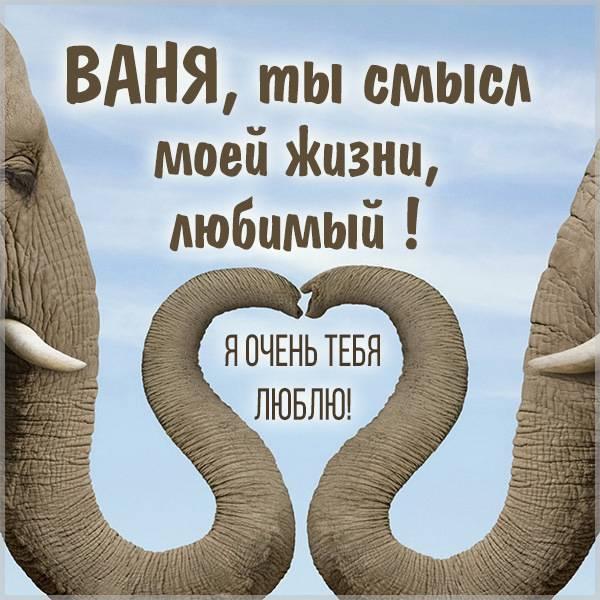 Картинка мой любимый Ваня - скачать бесплатно на otkrytkivsem.ru