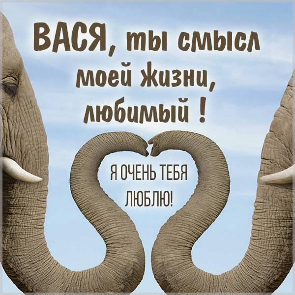 Картинка мой любимый Вася - скачать бесплатно на otkrytkivsem.ru