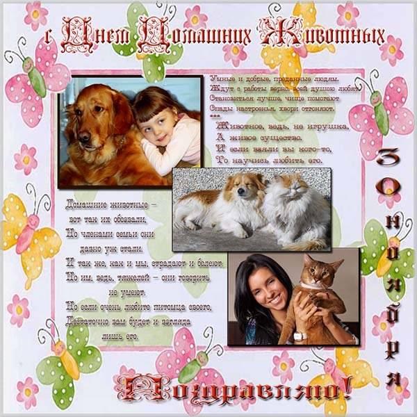 Картинка на день домашних животных 30 ноября - скачать бесплатно на otkrytkivsem.ru