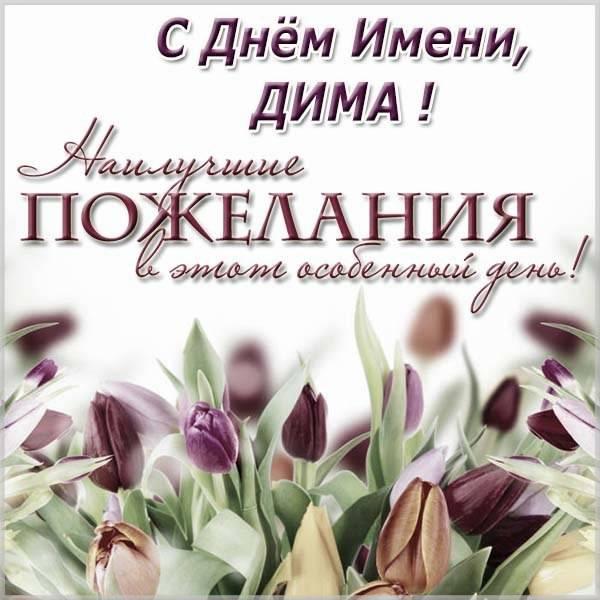 Картинка на день имени Дима - скачать бесплатно на otkrytkivsem.ru