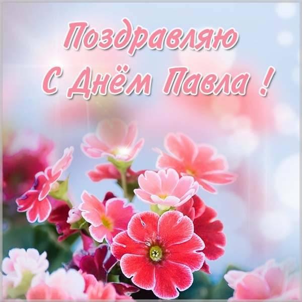 Картинка на день имени Павел - скачать бесплатно на otkrytkivsem.ru