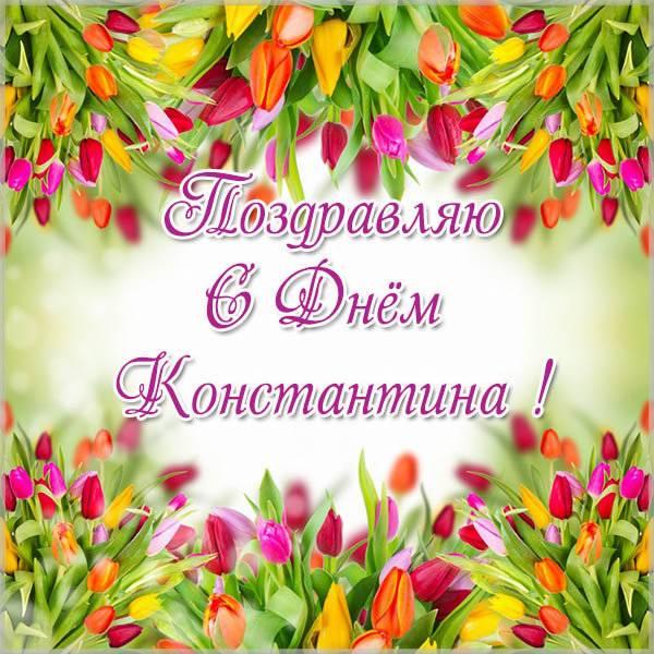 Картинка на день Константина - скачать бесплатно на otkrytkivsem.ru