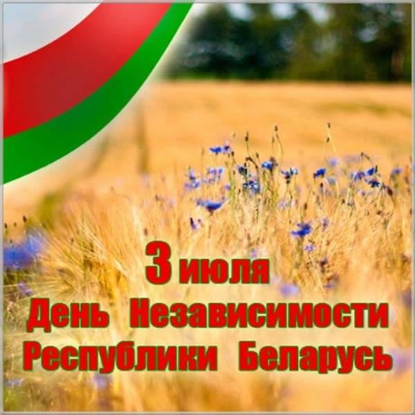 Картинка на день Республики Беларусь - скачать бесплатно на otkrytkivsem.ru