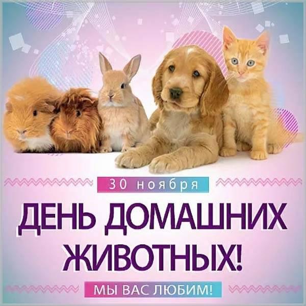 Картинка на день защиты домашних животных 30 ноября - скачать бесплатно на otkrytkivsem.ru