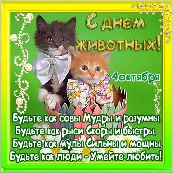 Картинка на день животных - скачать бесплатно на otkrytkivsem.ru