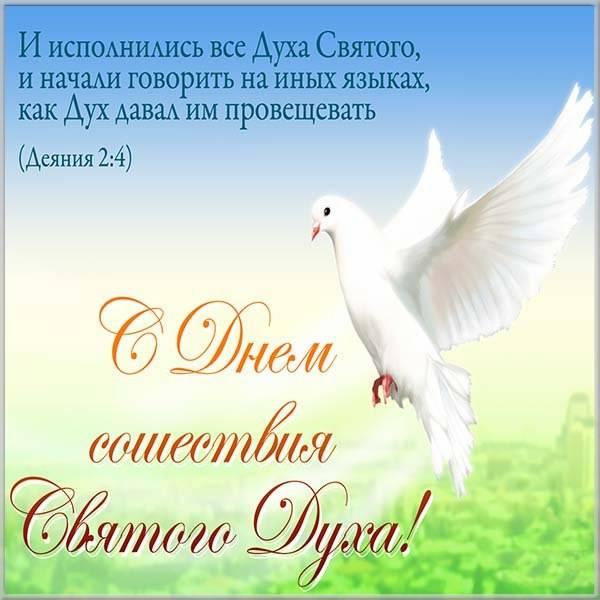 Картинка на Духов день с поздравлением - скачать бесплатно на otkrytkivsem.ru