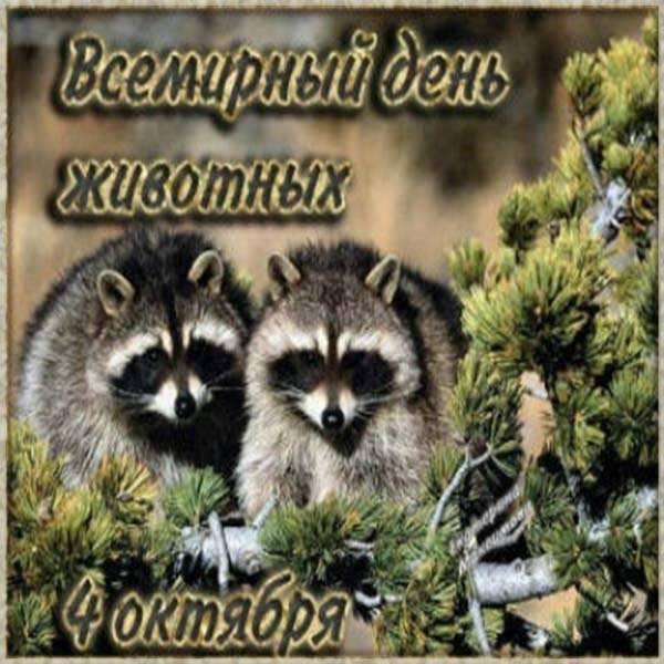 Картинка на международный день защиты животных - скачать бесплатно на otkrytkivsem.ru