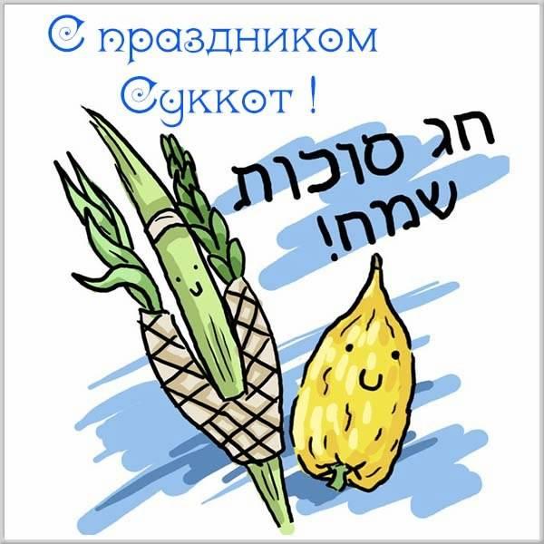 Картинка на праздник Суккот с поздравлением - скачать бесплатно на otkrytkivsem.ru
