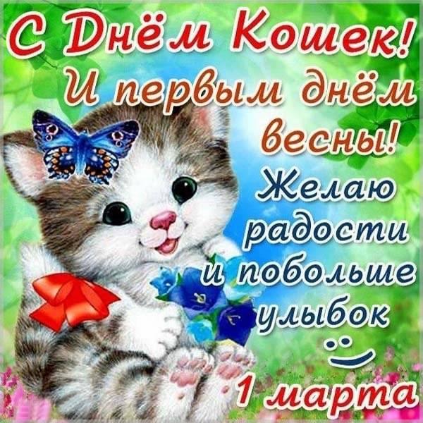 Картинка на всемирный день кошек - скачать бесплатно на otkrytkivsem.ru
