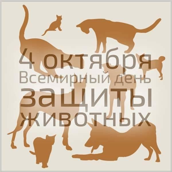 Картинка на всемирный день защиты животных - скачать бесплатно на otkrytkivsem.ru