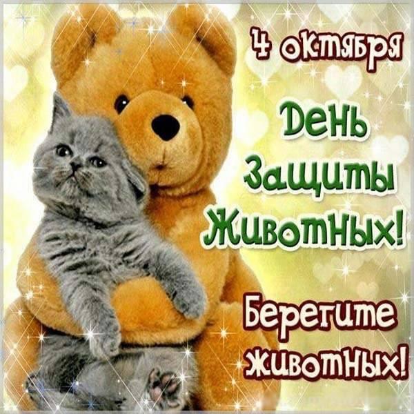 Картинка на всемирный праздник день защиты животных - скачать бесплатно на otkrytkivsem.ru