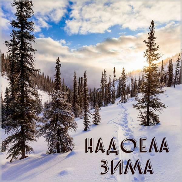 Картинка надоела зима - скачать бесплатно на otkrytkivsem.ru
