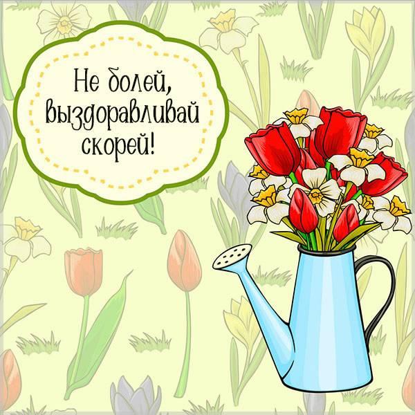 Картинка не болей выздоравливай скорей фото - скачать бесплатно на otkrytkivsem.ru