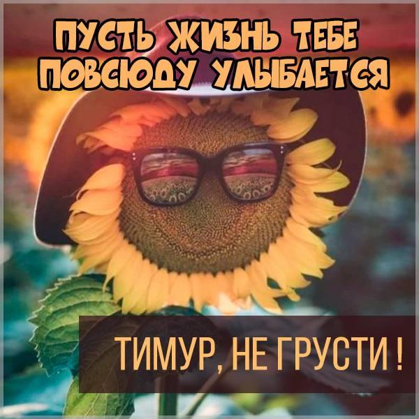 Картинка не грусти Тимур - скачать бесплатно на otkrytkivsem.ru