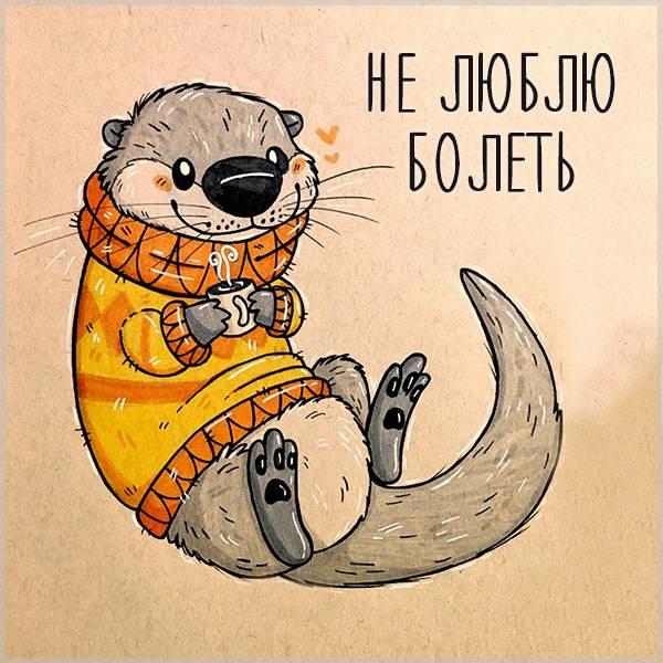 Картинка не люблю болеть - скачать бесплатно на otkrytkivsem.ru