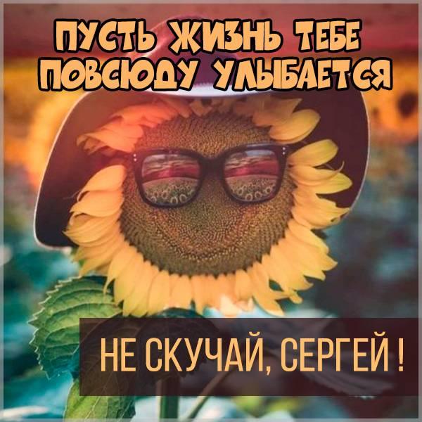 Картинка не скучай Сергей - скачать бесплатно на otkrytkivsem.ru