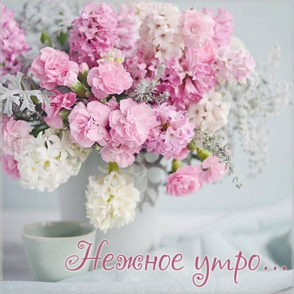 Картинка нежное утро красивая - скачать бесплатно на otkrytkivsem.ru