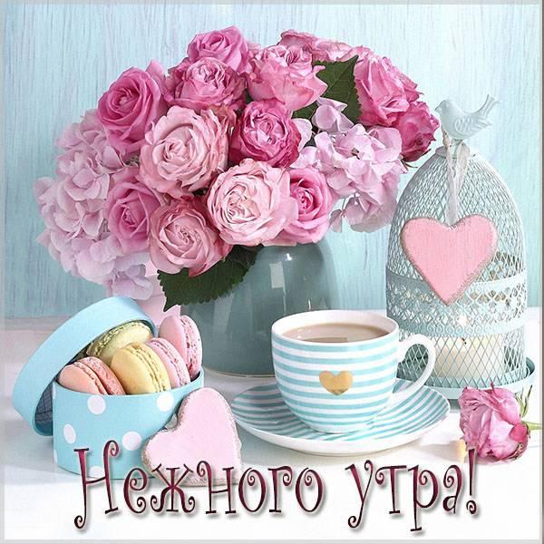 Картинка нежного утра девушке - скачать бесплатно на otkrytkivsem.ru