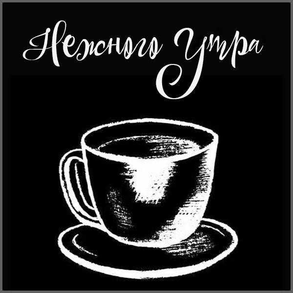 Картинка нежного утра мужчине - скачать бесплатно на otkrytkivsem.ru