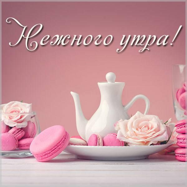 Картинка нежного утра с надписью красивая - скачать бесплатно на otkrytkivsem.ru