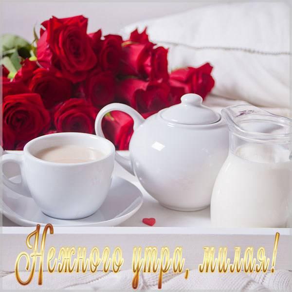 Картинка нежного утра женщине - скачать бесплатно на otkrytkivsem.ru