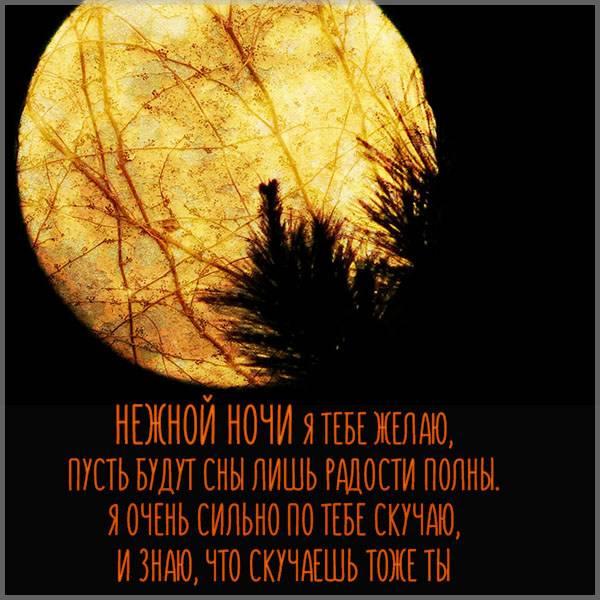 Картинка нежной ночи мужчине в стихах - скачать бесплатно на otkrytkivsem.ru