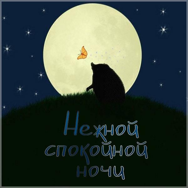 Картинка нежной спокойной ночи - скачать бесплатно на otkrytkivsem.ru