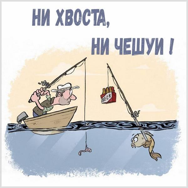 Картинка ни хвоста ни чешуи прикольная - скачать бесплатно на otkrytkivsem.ru