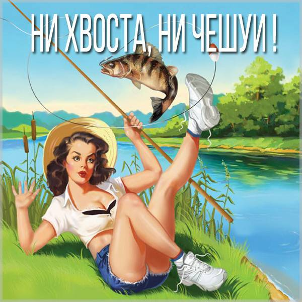 Картинка ни хвоста ни чешуи - скачать бесплатно на otkrytkivsem.ru