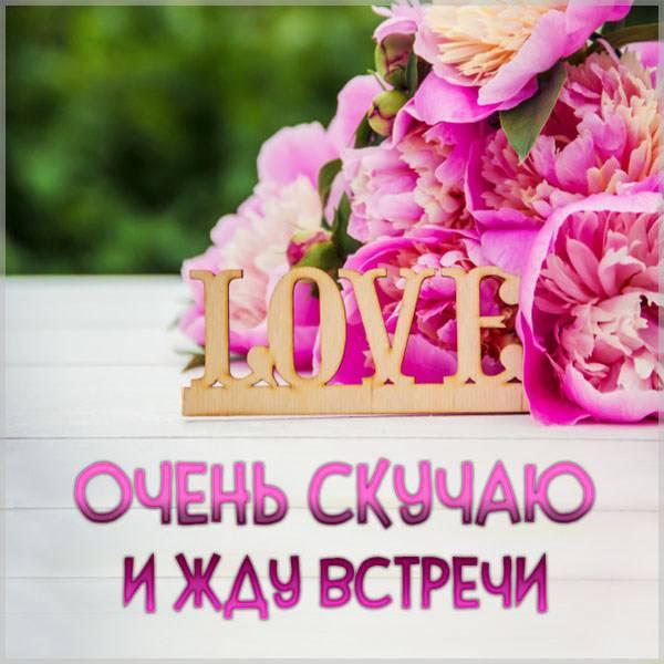Картинка очень скучаю и жду встречи - скачать бесплатно на otkrytkivsem.ru