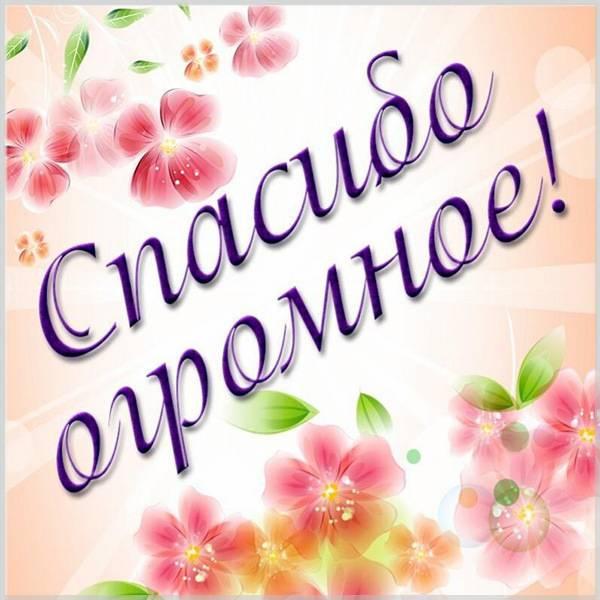 Картинка огромное спасибо красивая с надписью - скачать бесплатно на otkrytkivsem.ru