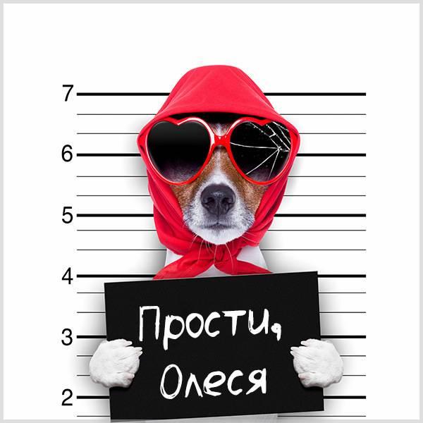 Картинка Олеся прости - скачать бесплатно на otkrytkivsem.ru